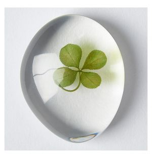 Clover in Transparent Stone