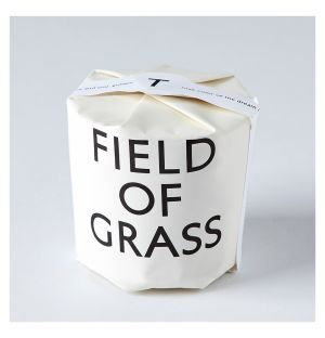 Field of Grass Scented Candle