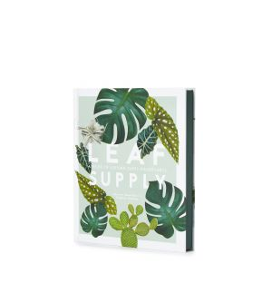 Leaf Supply Guide to Creating Your Indoor Jungle Book