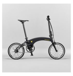 Folding Visual Multi-Speed Bike in Carbon