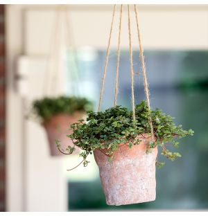 Turin Hanging Planter in Terracotta