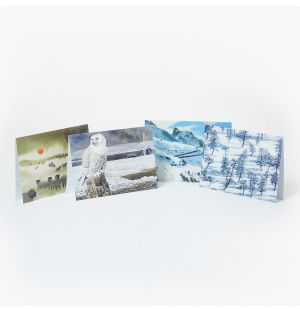 Snowy Landscape Greetings Cards Set of 24