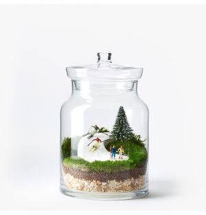 Exclusive Skiing Terrarium